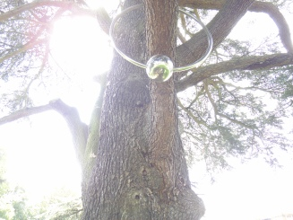 ou know you are in France when you find a tree with an earring, rather, a branch-ring